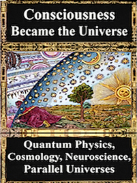 Pdf consciousness emerging physics the of
